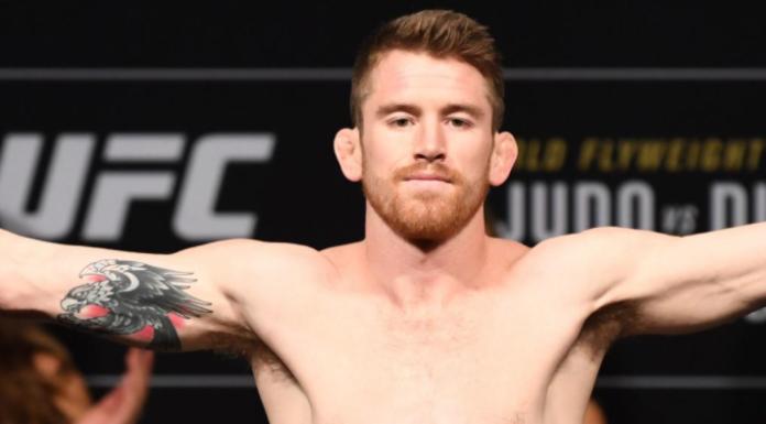 Sandhagen welcomes Dillashaw back to the UFC